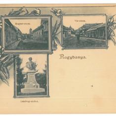 3790 ( 12957 ) Romania - Litho, BAIA MARE - old postcard - unused - Carte Postala Maramures pana la 1904, Necirculata, Printata