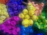Plante naturale uscate  -  MAC de gradina  - diverse culori