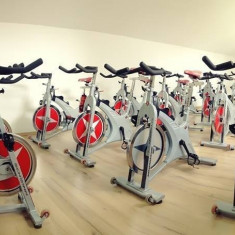 Oferta Set 18+1 biciclete Profesionale Cycling / Spinning Schwinn Evolution SR ! - Bicicleta fitness