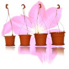 Ghiveci cu agatatoare GH1 - ghivece flori