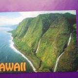 HOPCT 28303 HAWAI SUA -NECIRCULATA, Printata