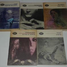 5 CARTI POEZIE BYRON, SHAKESPEARE, BAUDELAIRE, MICHELANGELO, VICTOR HUGO - Carte poezie
