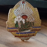 Emblema/ Cuc boneta garzi patriotice Republica Socialista Romania, Europa