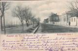 SALUTARI DIN TURNU SEVERIN  BULEVARDUL  CAROL I  CLASICA  CIRCULATA 1900, Printata