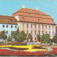 Bnk cp Sibiu - Muzeul Brukenthal - necirculata - Carte Postala Transilvania dupa 1918, Printata