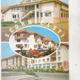 Bnk cp Scornicesti - Vedere - necirculata - marca fixa - Carte Postala Oltenia dupa 1918, Printata