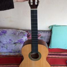 Chitara clasica Ibanez Hora Nylon Sistem nou