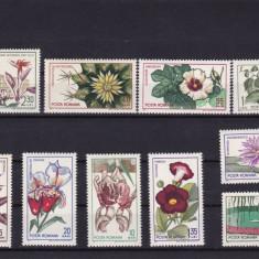 ROMANIA 1965, LP 615, GRADINA BOTANICA DIN CLUJ, SERIE MNH - Timbre Romania, Nestampilat