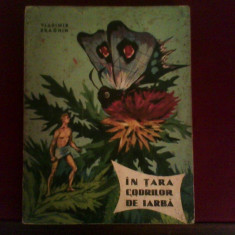 Vladimir Braghin In Tara Codrilor de iarba - Carte educativa