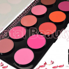 Trusa Blush 10 culori Fraulein38 Stay Pretty - Pudra