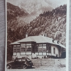 RC - BUSTENI 23 - Carte Postala Muntenia dupa 1918, Necirculata, Fotografie
