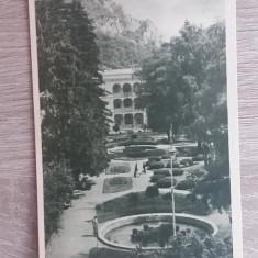 RC - BAILE HERCULANE 49 - Carte Postala Banat dupa 1918, Necirculata, Fotografie