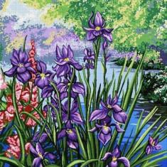 Goblen Iris