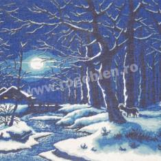 Noapte feerica (albastru) - goblen cu diagrama alb/negru - Broderie