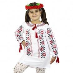Ie traditionala – Petunii rosii / 5019