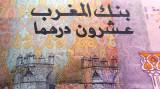 Bancnota 20 DIRHAMS - MAROC, anul 2005 *cod 482