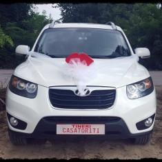 Ornament pentru masina miresei sub forma de buze cu pampon de tull.