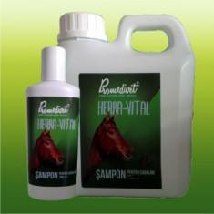 SAMPON HERBA-VITAL PENTRU CABALINE 1 LITRU - Masca de par