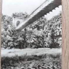 RC - CRAIOVA 33 - Carte Postala Oltenia dupa 1918, Necirculata, Fotografie