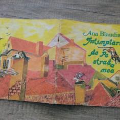 Intamplari de pe strada mea - Ana Blandiana/ ilustratii Doina Botez - Carte poezie copii