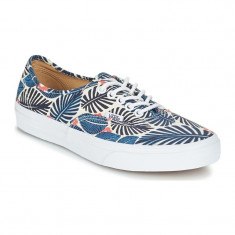 Shoes Vans Authentic Tropic Havana classic white/french blue