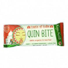 Baton ayurvedic Taste of India raw bio 30g - Sifonier, Numar de usi: 3