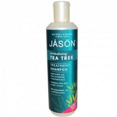 Sampon tratament Jason cu tea tree pt par deteriorat, 517ml - Dulap hol