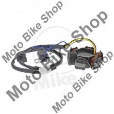 Lichtmaschine Stator, - Alternator Moto