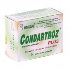Condartroz Plus 60cpr, HOFIGAL