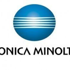 Heater Kit Minolta bizhub 200 / 250 / 350 - 1171-0903-03 / 1171090303 Konica Minolta, Componente