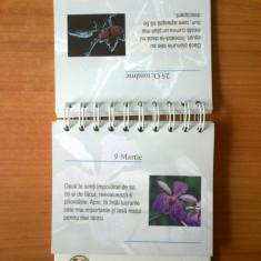 D1 Maxime despre succes - Maria Fontaine (sub forma de calendar de birou) - Carte Proverbe si maxime