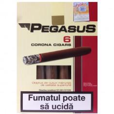 Tutun Tigari de foi PEGASUS 55g - Tutun Pentru tigari de foi