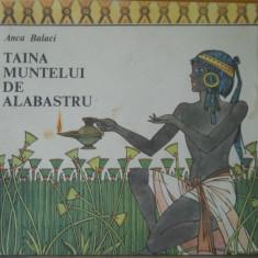 TAINA MUNTELUI ALBASTRU - ANCA BALACI - ILUSTRATII VAL MUNTEANU - Carte de povesti