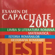 CAPACITATE LIMBA SI LITERATURA ROMANA MATEMATICA ISTORIA ROMANILOR GEOGRAFIA