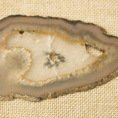 Felie agat slefuit 1 - Fosila roca
