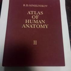 ATLAS OF HUMAN ANATOMY ( atlas de anatomie umana) - SINELNIKOV - volumul 2