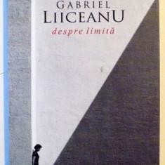 DESPRE LIMITA de GABRIEL LIICEANU, 2009 - Roman