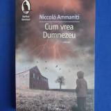 CUM VREA DUMNEZEU, NICCOLO AMMANITI - Roman