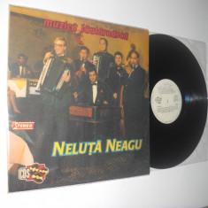 NELUŢĂ NEAGU: Muzica Lautareasca Altele (1991)(disc vinil mai rar in stare impecabila!)