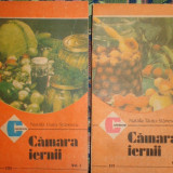 Camara iernii 2 vol./an 1989/420pagini