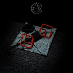 Papioane 3D - Papion