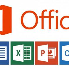 Office 2013 Profesional - Aplicatie PC