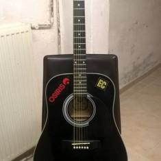 Chitara Hora W12204