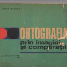 (C7499) ORTOGRAFIA PRIN IMAGINI SI COMPARATII DE ION P. NECULA - Carte educativa