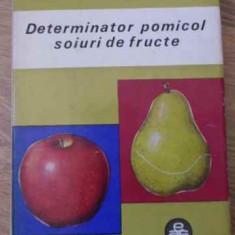 Determinator Pomicol Soiuri De Fructe Vol.1 Mere, Pere, Gutui - T. Bordeianu, V. Cociu, Gh. Stanciu, 396181 - Carti Agronomie