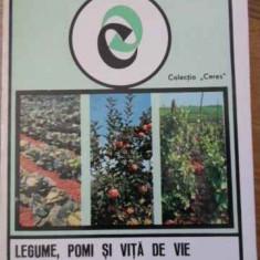 Legume, pomi Si Vita De Vie Pe Langa Casa - T.groza M.voinea V.lazarescu, 396161 - Carti Agronomie