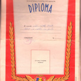 Diploma si Insigna Militar De Frunte - Diploma/Certificat