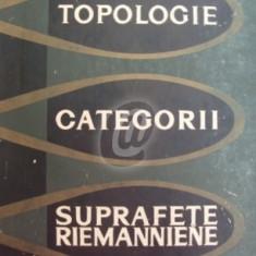 Topologie. Categorii. Suprafete Riemanniene - Carti Constructii