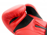 Manusi de box  pentru antrenament -  14 oz - Noi