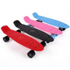 Skateboard 27 Inch Penny Board